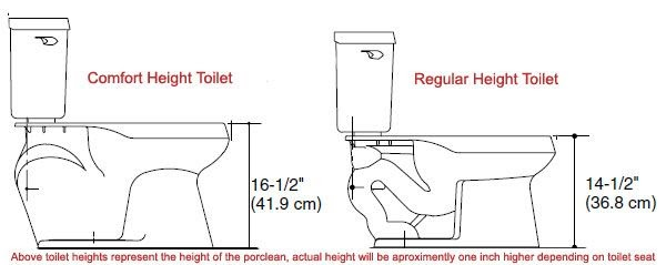 What's the Difference Between Standard Height vs. Comfort Height Toilets?